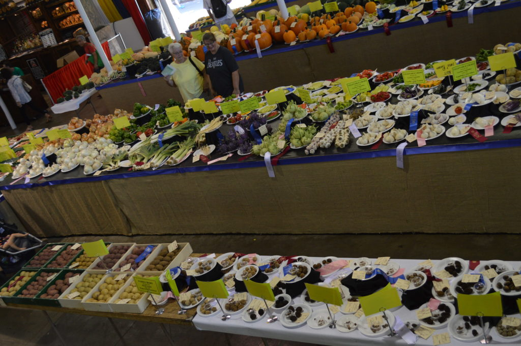 Numerous categories of vegetables are displayed in the Agricultural Building at the Iowa State Fair in Des Moines. (photo/Cindy Hadish)