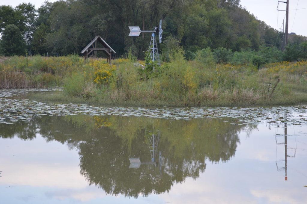 i-wetland