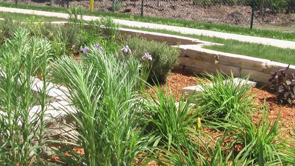 Free master gardener talks at Ladd Library in December